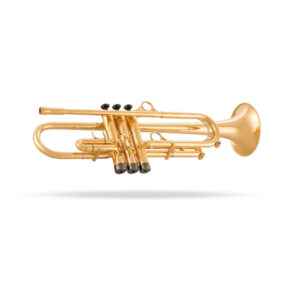 B-Trompete Dani Felber